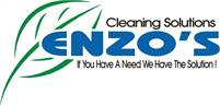 Enzo's Cleaning Solutions Maureen Esposito